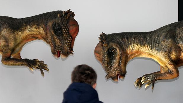 «Dinosaurs Tour» ha inaugurado en León este sábado la considerada como mayor exposición de dinosaurios animatrónicos