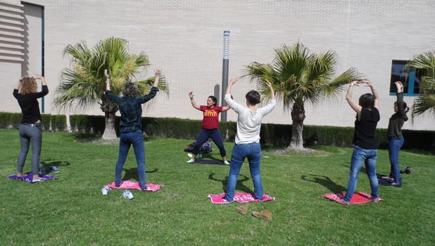Personal de la Universidad de Elche durante una de las pausas saludables en el campus