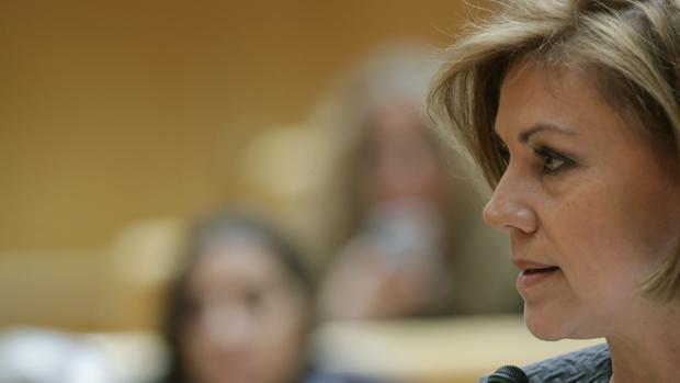 La ministra, durante la sesión de control al Gobierno en el Senado
