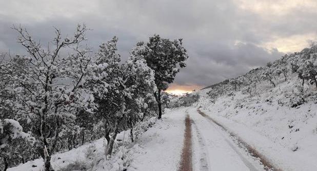 Foto de archivo de una de las nevadas copiosas que han caído este año en la región