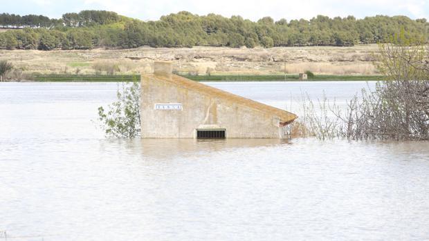 Caseta cubierta por las aguas desbordadas del Ebro en su tramo aragonés
