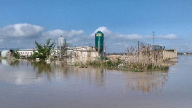 La granja, totalmente rodeada por el agua