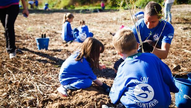 Imagen de uno de los proyectos medioambientales llevados a cabo por los voluntarios de Global Omnium