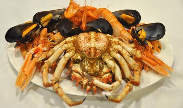 Mariscos y moluscos habituales de las rías gallegas