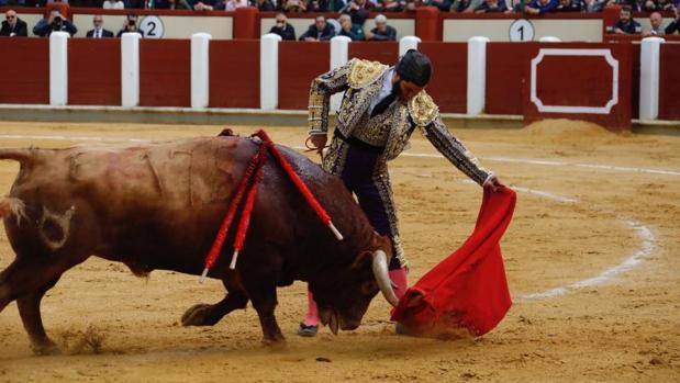Morante, al natural, durante su actuación en el coso de Valladolid