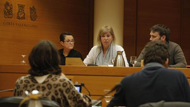 Anabel Hallado, durante su comparecencia este miércoles en la comisión
