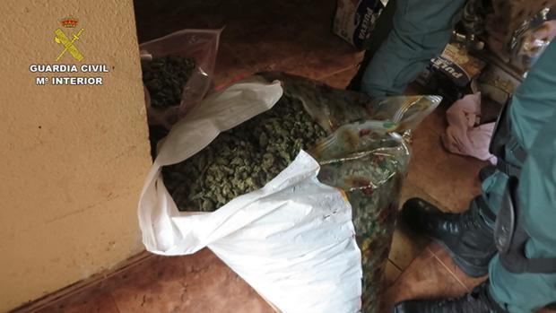 Veinticinco kilos de marihuana ya estaban preparados para su distribución