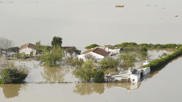 Porpiedades anegadas por el agua en las inundaciones del Ebro del año pasado