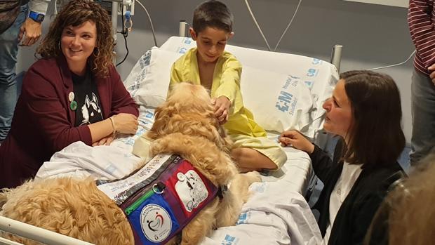Adrián, recibiendo las atenciones del perro Zenit, uno de los participantes en el programa