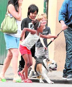 La mascota de los niños Pitt Jolie