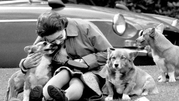 Isabel II junto a sus perros