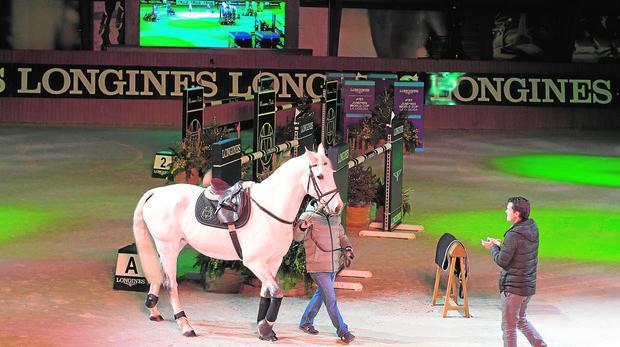 Marta Ortega reaparece tras su boda para despedir a su caballo favorito