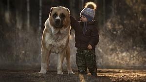Lo que debes preguntarte antes de incluir un perro en la lista de los Reyes Magos