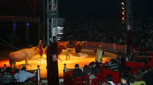 Espectáculo del año 2007. Todavía con animales en la pista