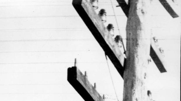 Recurso fotográfico de antena de radio