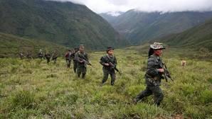 Trece menores, los primeros en abandonar las filas de las FARC