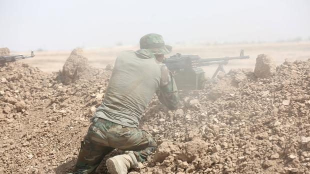 Un combatiente de las milicias chiíes, en un frente iraquí contra Daesh