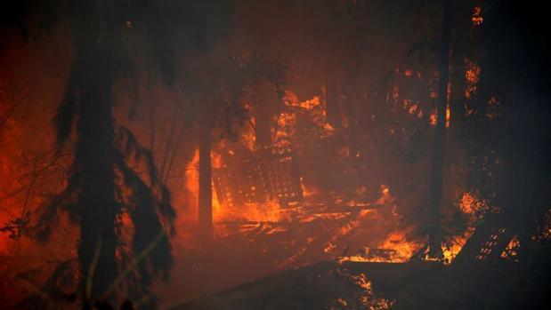 El fuego está devastando zonas de la ciudad de Haifa, en el norte de Israel
