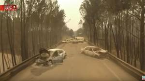 La carretera de Portugal que se convirtió en una ratonera mortal