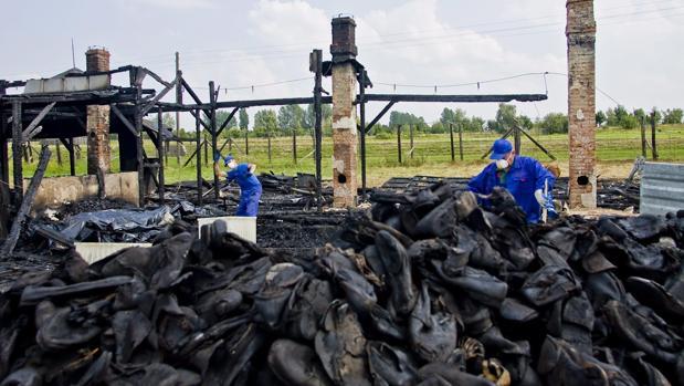 Voluntarios recogen restos de calzado quemado del campo de exterminio nazi de Majdanek