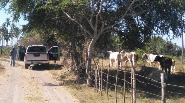 Encuentran 69 cuerpos en una fosa común en México