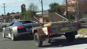 Vídeo: Arrastra un carro lleno de cabras con un Lamborghini