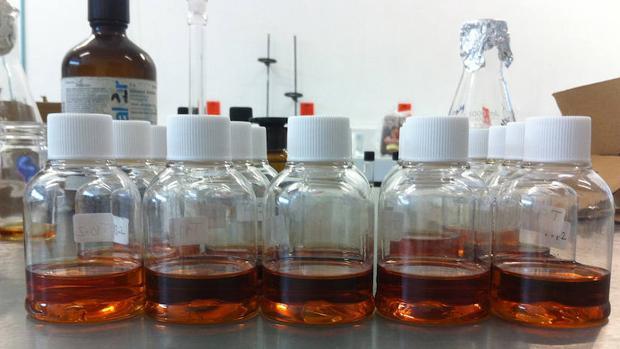 Biodiésel:  Investigan nuevos biocatalizadores para obtener combustible del aceite de los restaurantes