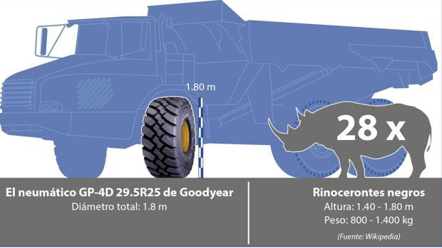 ¿Qué tienen en común un neumático y un rinoceronte?