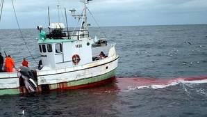 Anonymous ataca la web del primer ministro de Japón como represalia por la caza de ballenas