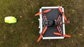 Lince ibérico: un dron apoyará el seguimiento de los ejemplares liberados
