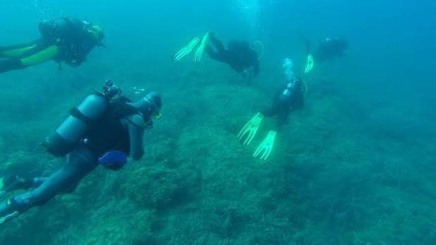 «Wildsea Divers» se ha desarrollado desde finales de 2015 hasta octubre de 2016 en las islas Medes y en las islas Toro y Malgrats