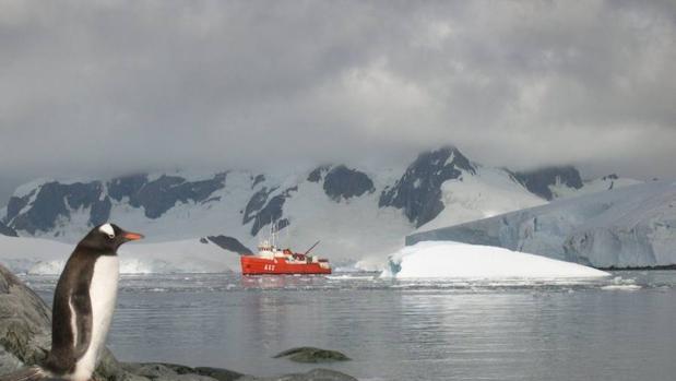 Masas de agua caliente están modificando el agua profunda que circula alrededor de la Antártida, y que está derritiendo las grandes masas de agua helada