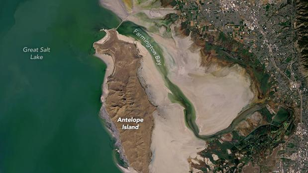 Imagen satelital tomada en octubre de 2016 del Gran Lago Salado de Estados Unidos