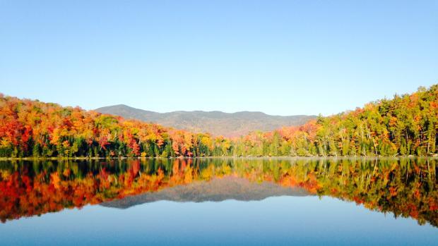 Los bosques ocupan 27 millones de hectáreas en España (el 54% de la superficie nacional)