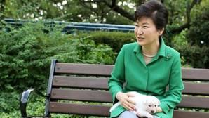 Critican a la expresidenta surcoreana por abandonar a sus nueve perros tras su destitución