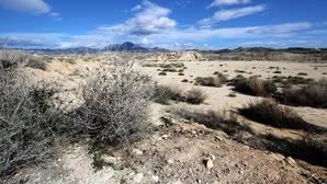Más de dos tercios de España, en riesgo de secarse