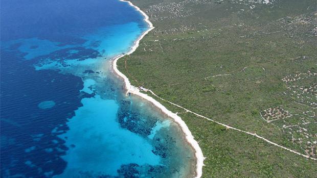 Los círculos de hadas son claros sin vegetación de forma circular que surgen en las praderas de Posidonia oceánica