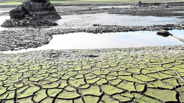 Tierra seca y cuarteada en el embalse de Belesar (Galicia)