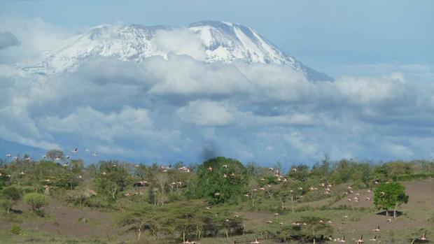 Parque Nacional Kilimanjaro (Tanzania)
