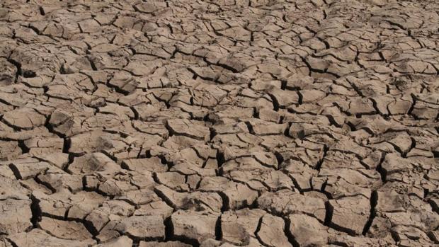 El suelo que tenemos es el único suelo que habrá a lo largo de nuestras vidas