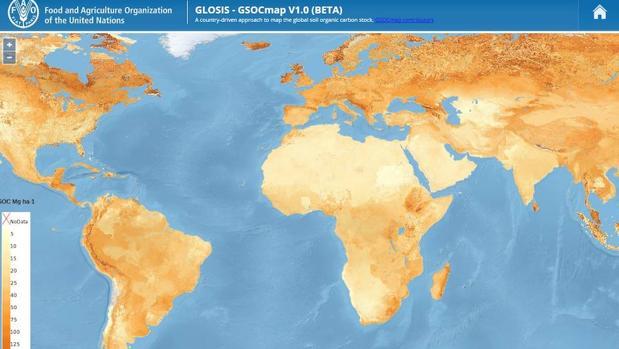 Elaboran un Mapa Mundial de Carbono Orgánico del Suelo