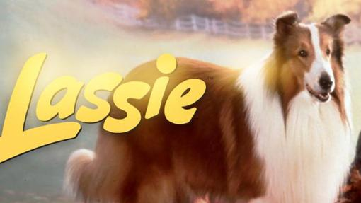 Lassie era una border collie