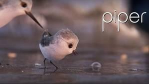 «Piper», uno de los cortos más bellos de la factoría Pixar, ya está disponible gratis en Internet