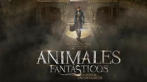 Cinco secretos de «Animales fantásticos y dónde encontrarlos»