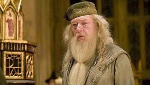 Dumbledore resucitará en la secuela de «Animales fantásticos y dónde encontrarlos»