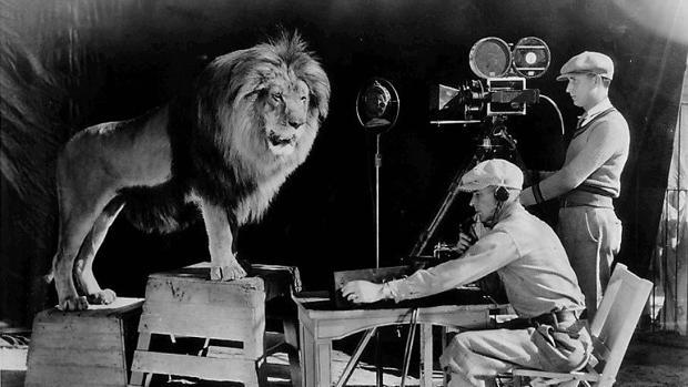 Leo, el primer león que encabezó la imagen de la MGM, de la que Louis B. Mayer fue fundador