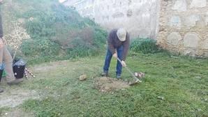 Arranca la exhumación en Cádiz de 15 víctimas de la Guerra Civil