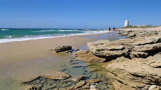 La playa del Palmar inicia la cuenta atrás para su temporada alta