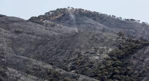 El incendio del Castillo de las Guardas afectará gravemente a turismo, toros de lidia y cerdos ibéricos