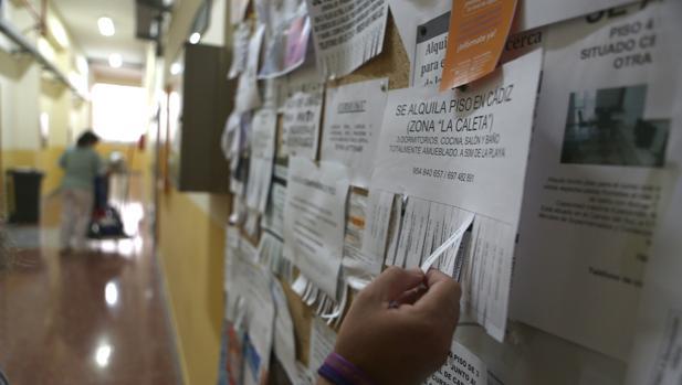 ¿Cuánto les cuesta a los universitarios estudiar en Cádiz?